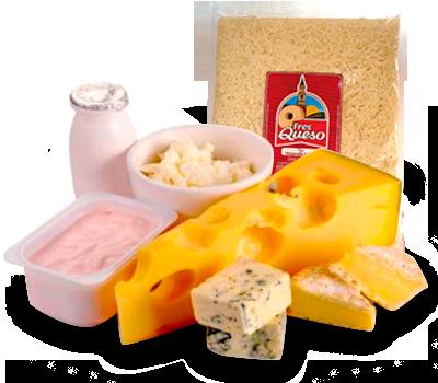 Productos Lácteos - Más que buena carne Loydeal